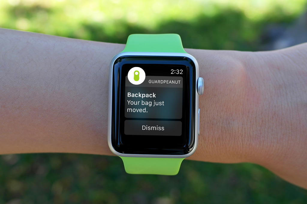 GuardPeanut notification on Apple Watch